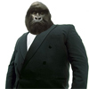 Viata de maimuta: Gorila de club
